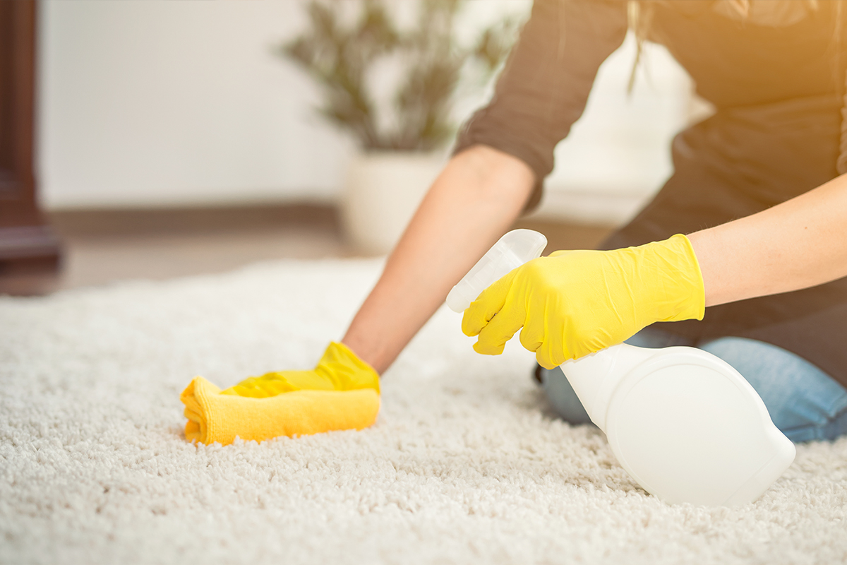 spray shampoo for rug cleaning